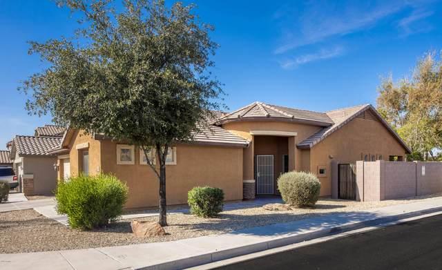 11252 W Buchanan Street, Avondale, AZ 85323 (MLS #6038192) :: Brett Tanner Home Selling Team