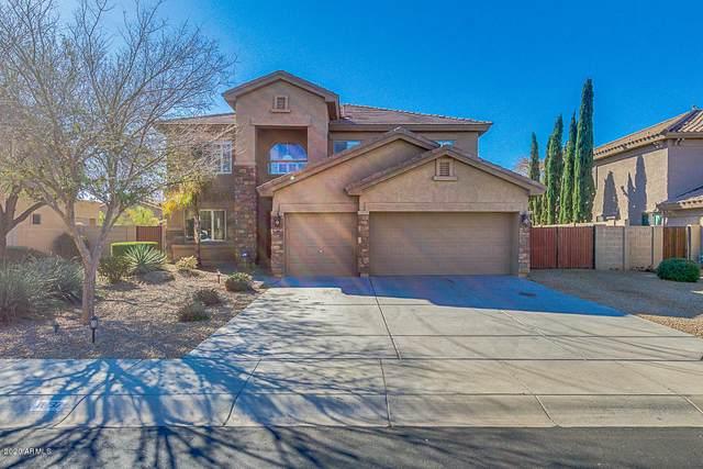11437 E Sheridan Circle, Mesa, AZ 85212 (MLS #6038196) :: The Property Partners at eXp Realty
