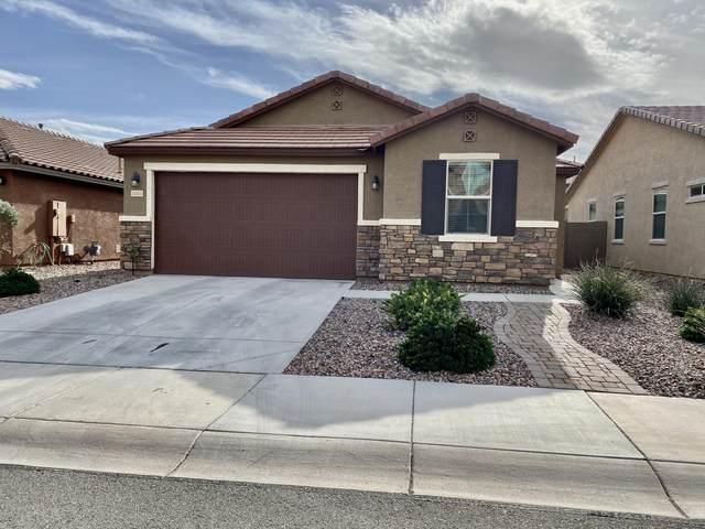 12023 W Range Mule Drive, Peoria, AZ 85383 (MLS #6038238) :: Homehelper Consultants