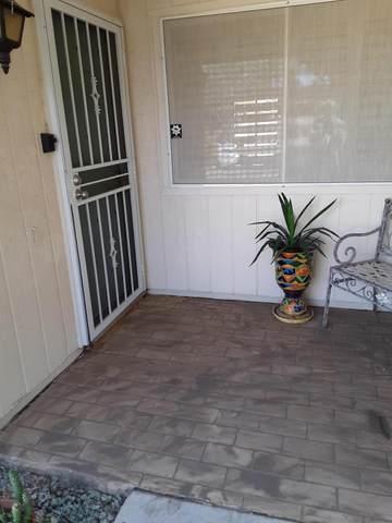 13257 W Bolero Drive, Sun City West, AZ 85375 (MLS #6038277) :: The Property Partners at eXp Realty