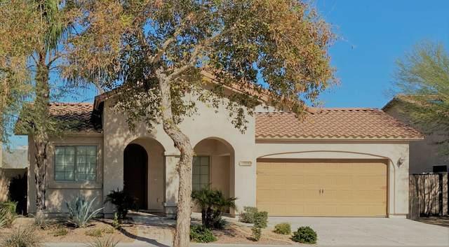 1532 E Apollo Road, Phoenix, AZ 85042 (MLS #6038331) :: Lux Home Group at  Keller Williams Realty Phoenix