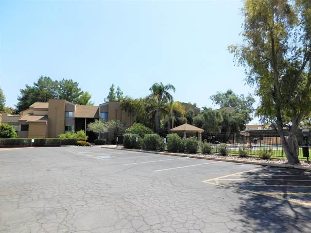 18811 N 19TH Avenue #1005, Phoenix, AZ 85027 (MLS #6038359) :: Revelation Real Estate