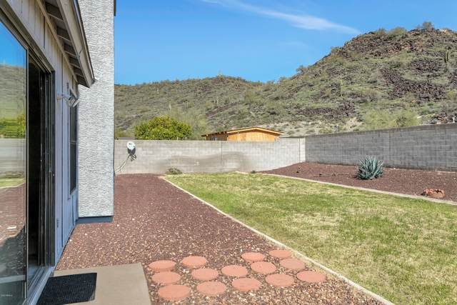 22607 N 30TH Avenue, Phoenix, AZ 85027 (MLS #6038365) :: Homehelper Consultants