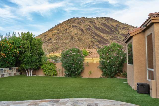 13562 E Thoroughbred Trail, Scottsdale, AZ 85259 (MLS #6038382) :: The Daniel Montez Real Estate Group