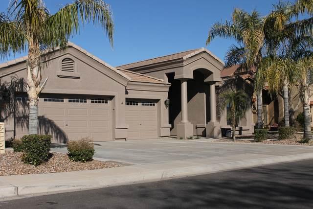 5140 S Monte Vista Street, Chandler, AZ 85249 (MLS #6038398) :: The Andersen Group