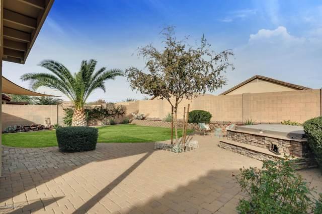 25740 W St James Avenue, Buckeye, AZ 85326 (MLS #6038426) :: Conway Real Estate