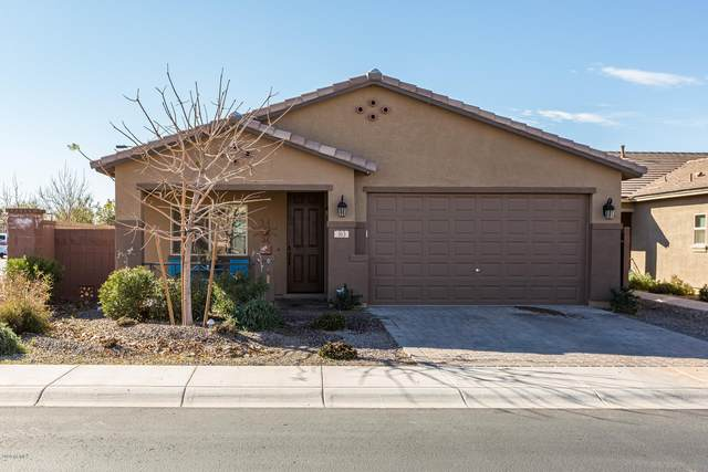363 W Evergreen Pear Avenue, San Tan Valley, AZ 85140 (MLS #6038436) :: Homehelper Consultants