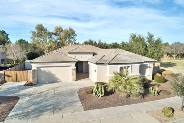 18468 E Macaw Drive, Queen Creek, AZ 85142 (MLS #6038463) :: Homehelper Consultants
