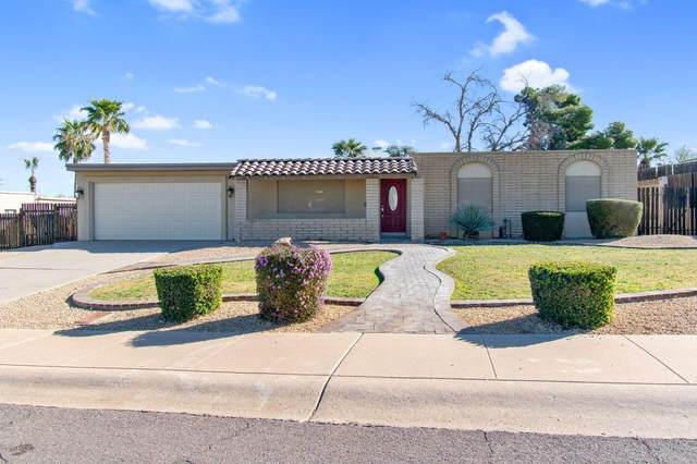 14629 N 24TH Place, Phoenix, AZ 85032 (MLS #6038465) :: Homehelper Consultants
