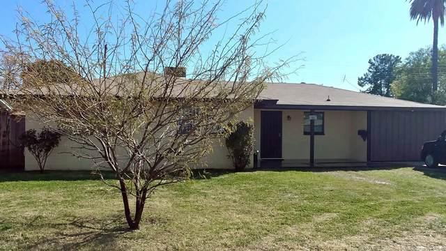 447 N Fraser Drive, Mesa, AZ 85203 (MLS #6038468) :: Homehelper Consultants