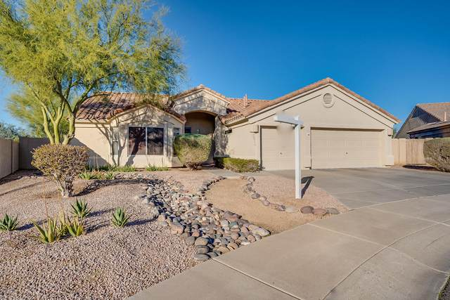 29040 N 48TH Street, Cave Creek, AZ 85331 (MLS #6038469) :: The Laughton Team