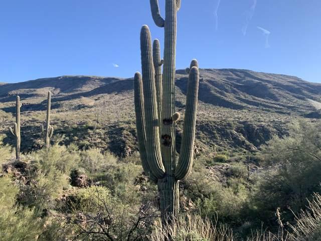 0000 Tara Springs Road, Black Canyon City, AZ 85324 (MLS #6038501) :: Dave Fernandez Team | HomeSmart