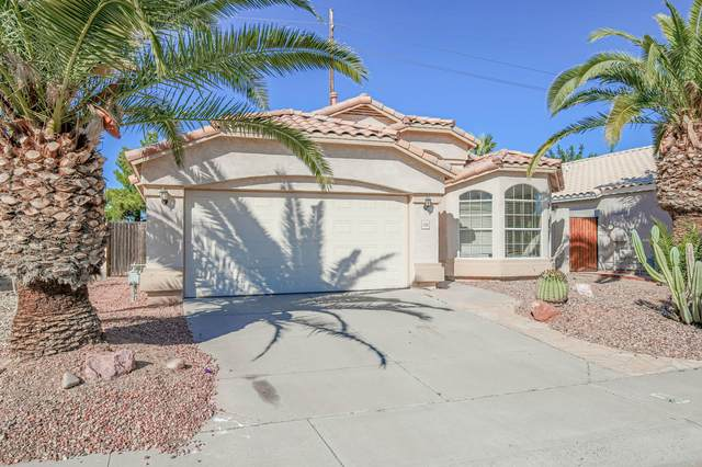 1760 W Derringer Way, Chandler, AZ 85286 (MLS #6038523) :: Dave Fernandez Team | HomeSmart