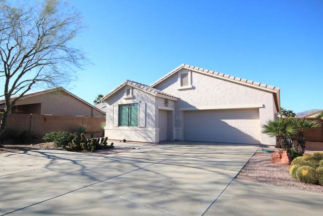 18202 N Coconino Drive, Surprise, AZ 85374 (MLS #6038535) :: Devor Real Estate Associates