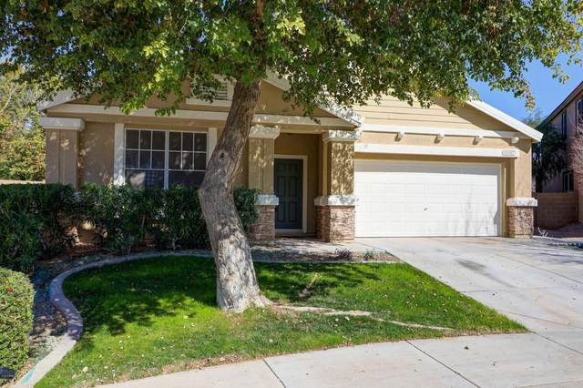15107 W Yucatan Drive, Surprise, AZ 85379 (MLS #6038543) :: Devor Real Estate Associates