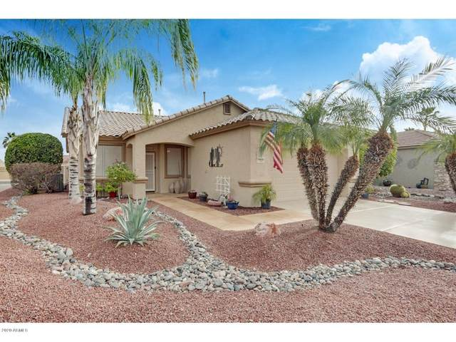 17025 N Erin Lane, Surprise, AZ 85374 (MLS #6038554) :: Devor Real Estate Associates