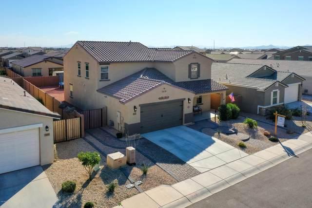39933 W Brandt Drive, Maricopa, AZ 85138 (MLS #6038590) :: Scott Gaertner Group