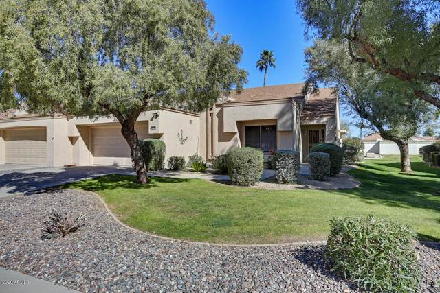 14142 W Yosemite Drive, Sun City West, AZ 85375 (MLS #6038616) :: Scott Gaertner Group