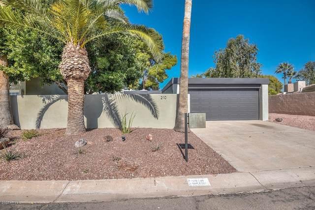 210 W Winged Foot Road, Phoenix, AZ 85023 (MLS #6038627) :: Revelation Real Estate