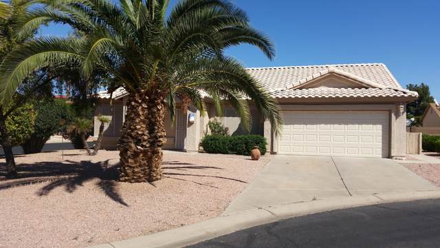 6321 S Cypress Point Drive, Chandler, AZ 85249 (MLS #6038641) :: Revelation Real Estate