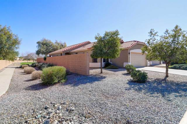 33921 N Barbara Drive, Queen Creek, AZ 85142 (MLS #6038687) :: NextView Home Professionals, Brokered by eXp Realty