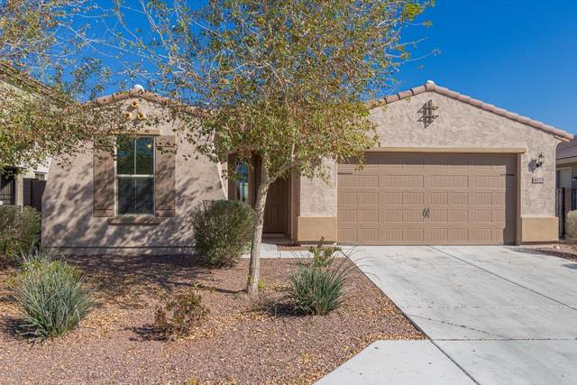 4125 S 186TH Avenue, Goodyear, AZ 85338 (MLS #6038722) :: Conway Real Estate
