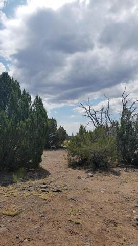 Lot 172 Old Highway 66, Ash Fork, AZ 86320 (MLS #6038726) :: The Laughton Team