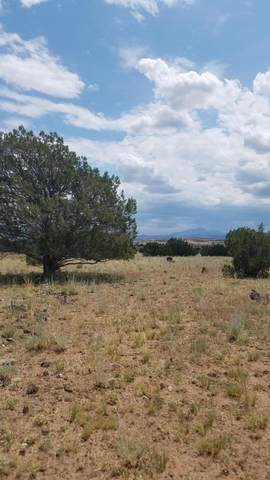 264C Old Highway 66, Ash Fork, AZ 86320 (MLS #6038756) :: The Laughton Team