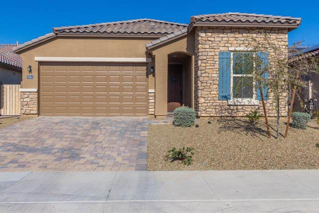 9984 W Robin Lane, Peoria, AZ 85383 (MLS #6038808) :: The Laughton Team