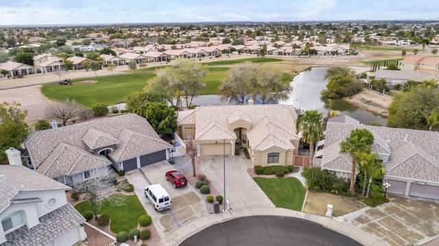 6333 E Player Circle, Mesa, AZ 85215 (MLS #6038821) :: Conway Real Estate