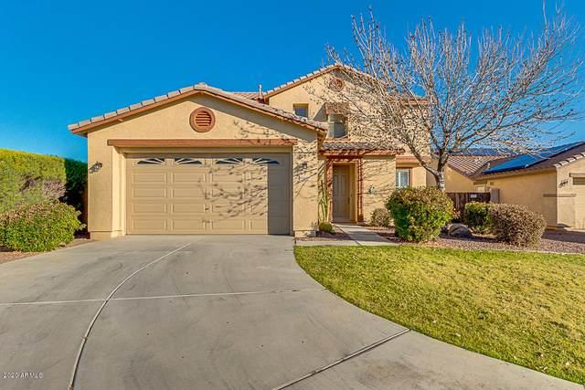 16464 W Honeysuckle Drive, Surprise, AZ 85387 (MLS #6038828) :: Conway Real Estate