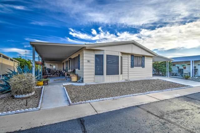 8103 E Southern Avenue #91, Mesa, AZ 85209 (MLS #6038845) :: Conway Real Estate
