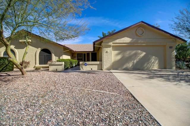 20403 N Wintergreen Drive, Sun City West, AZ 85375 (MLS #6038855) :: Dave Fernandez Team | HomeSmart