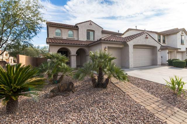 5113 W Swayback Pass, Phoenix, AZ 85083 (MLS #6038856) :: Conway Real Estate