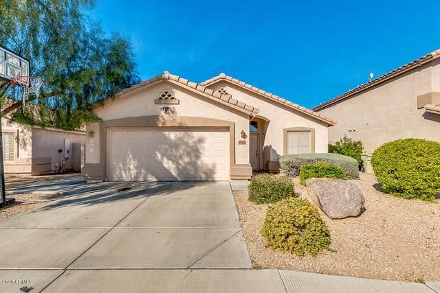 7022 W Aire Libre Avenue, Peoria, AZ 85382 (MLS #6038877) :: Conway Real Estate