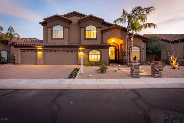 1935 E Seminole Drive, Phoenix, AZ 85022 (MLS #6038897) :: The Kenny Klaus Team
