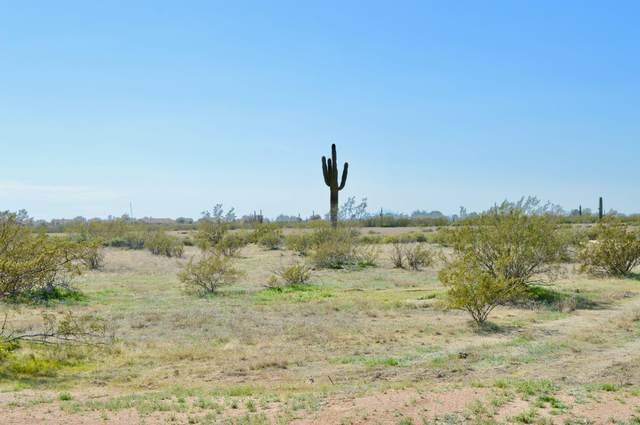 00000 N Bella Dominga Road, Casa Grande, AZ 85194 (MLS #6038905) :: Conway Real Estate