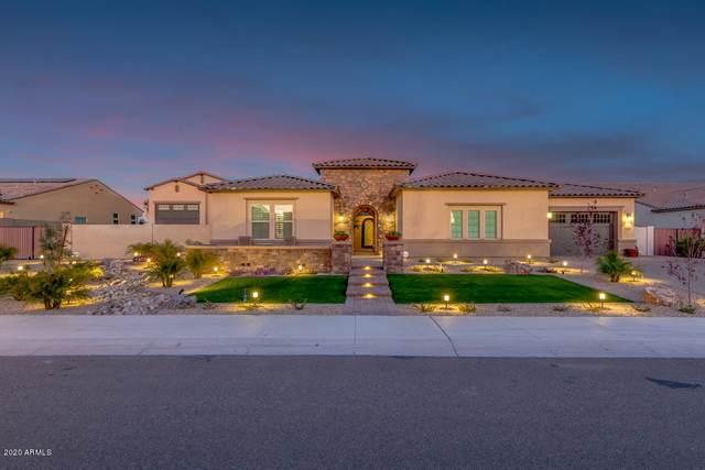 22477 N 91ST Drive, Peoria, AZ 85383 (MLS #6038967) :: Yost Realty Group at RE/MAX Casa Grande