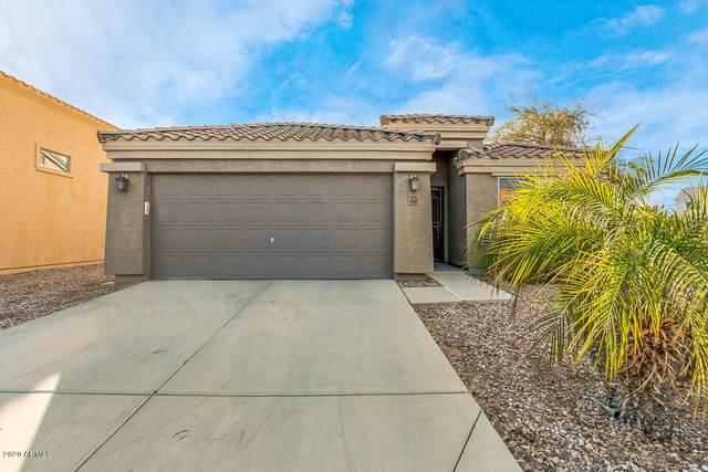 5698 S 237TH Drive, Buckeye, AZ 85326 (MLS #6038969) :: Dijkstra & Co.