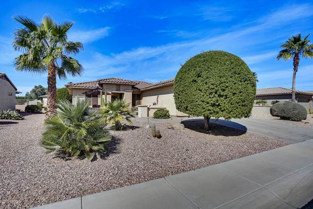 14976 W Cooperstown Way, Surprise, AZ 85374 (MLS #6039008) :: Conway Real Estate