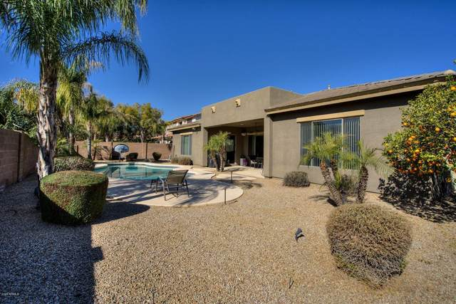 2349 E Kaibab Place, Chandler, AZ 85249 (MLS #6039051) :: NextView Home Professionals, Brokered by eXp Realty