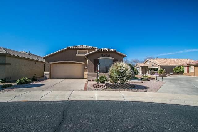 17220 N Javelina Drive, Surprise, AZ 85374 (MLS #6039083) :: Conway Real Estate