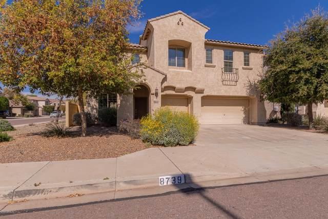 8739 N 182ND Lane, Waddell, AZ 85355 (MLS #6039091) :: Sheli Stoddart Team | M.A.Z. Realty Professionals