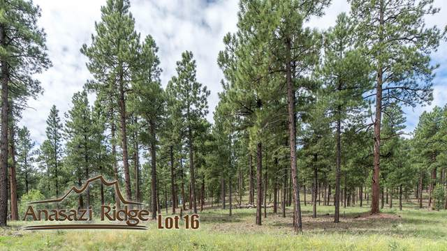 2097 N Cobblestone Circle, Flagstaff, AZ 86001 (MLS #6039112) :: Dijkstra & Co.