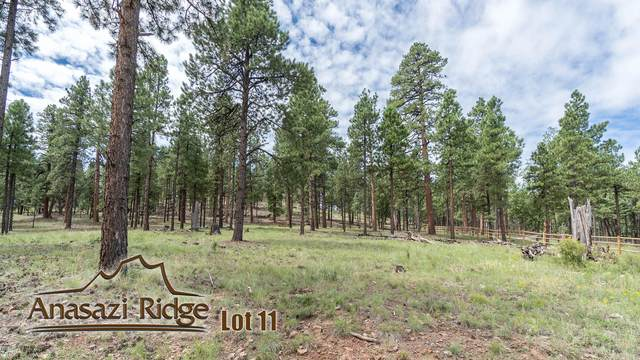 2057 N Cobblestone Circle, Flagstaff, AZ 86001 (MLS #6039120) :: Lucido Agency