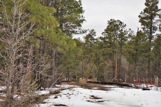 TBD Show Low Lake Road, Lakeside, AZ 85929 (MLS #6039123) :: Dijkstra & Co.