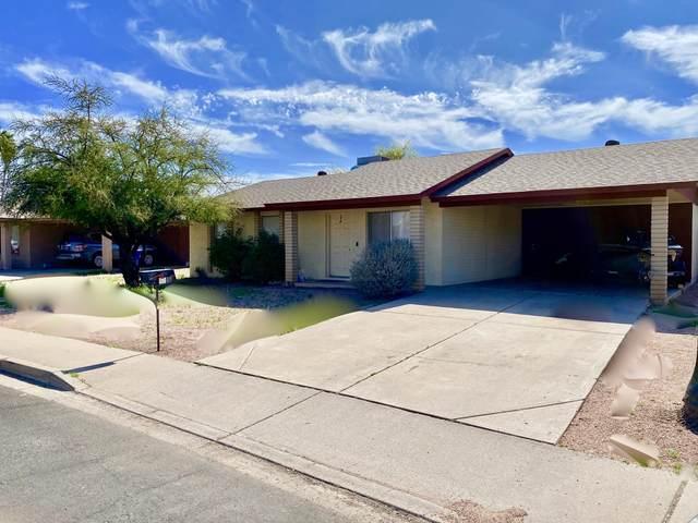 1143 W Hackamore Street, Mesa, AZ 85201 (MLS #6039133) :: Keller Williams Realty Phoenix