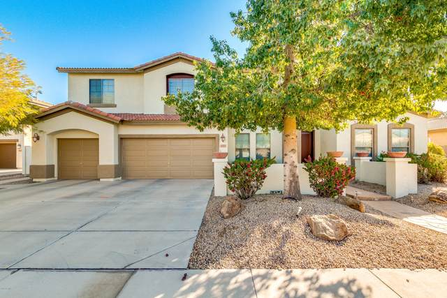 4441 S Danielson Way, Chandler, AZ 85249 (MLS #6039140) :: Klaus Team Real Estate Solutions