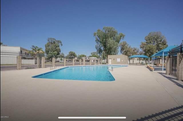 13212 N 26TH Drive, Phoenix, AZ 85029 (MLS #6039174) :: The W Group