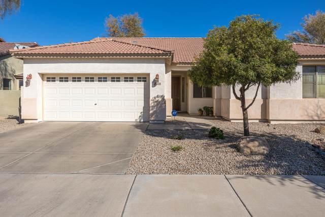 2528 W Saint Kateri Drive, Phoenix, AZ 85041 (MLS #6039180) :: Conway Real Estate